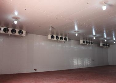 Focusun ice storage, walk-in storage, reefer container, ice